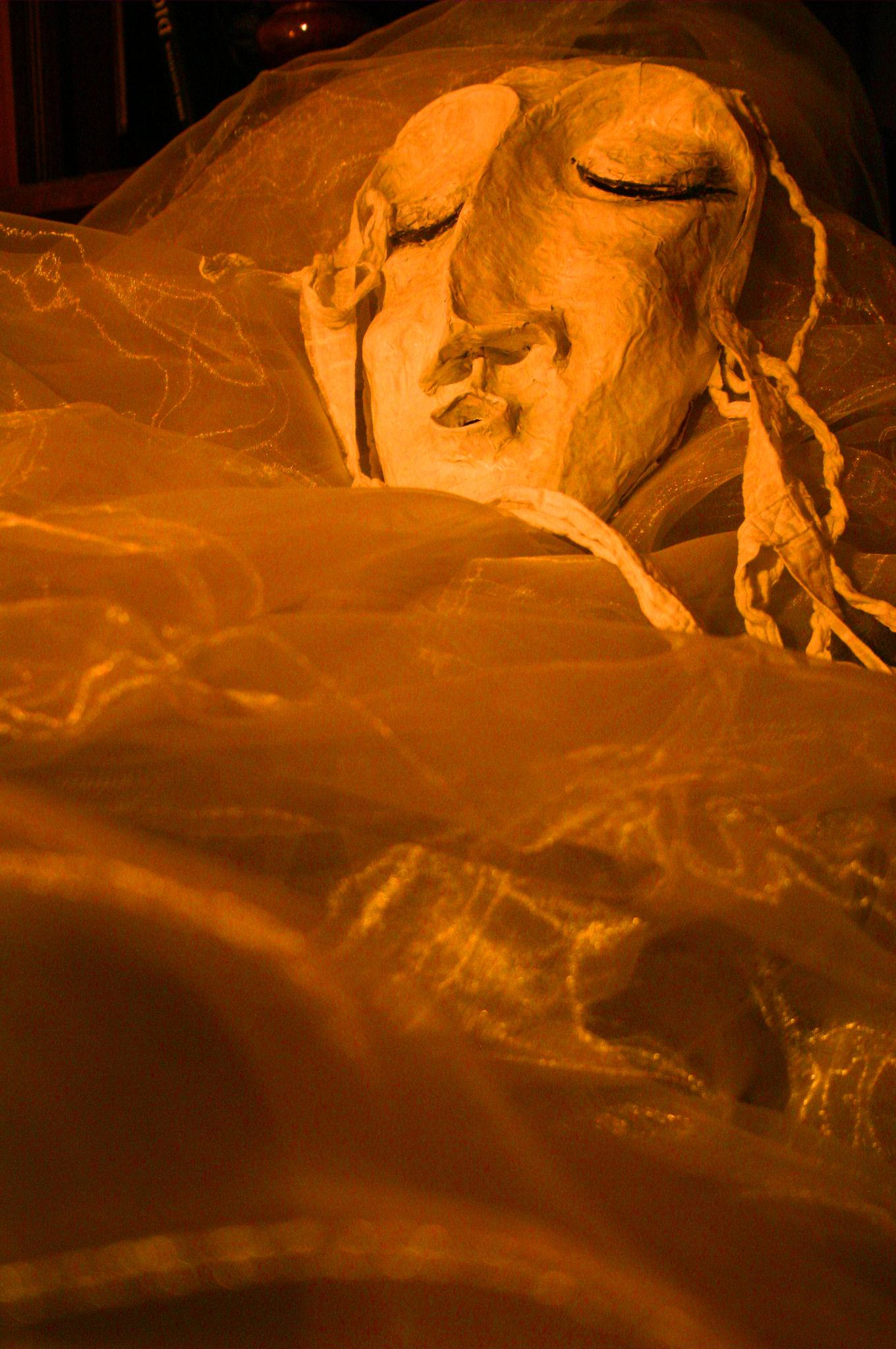 Die befeuchtenden Masken für die Person planeta organica
